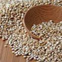 Cuisson de base de la quinoa